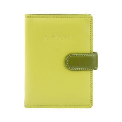 Обложка для паспорта Visconti RB75 Sumba (Lime Multi)