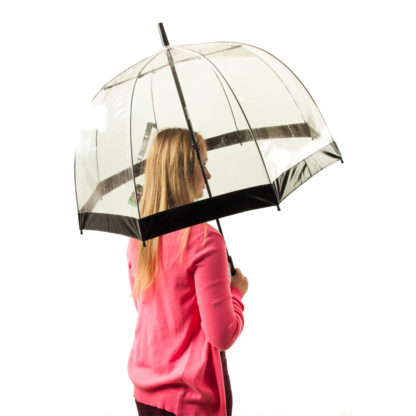 Зонт-трость женский Fulton Birdcage-1 L041 Black (Черный)